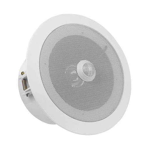 Overhead PIR Motion Sensor Activated Audio Player