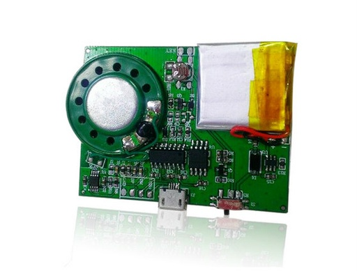Greeting Card Sound Module Activated by Light Sensor
